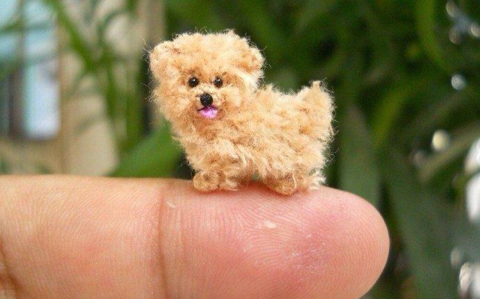 Пальчиковые собачки как сделать — Music-of-truth.ru
